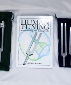 """Beginner's Special – """"The Body Tuners"""", """"The Otto 128"""" and the book """"Human Tuning"""""""