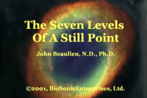 The Seven Levels Of A Still Point (Digital Download)